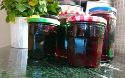 Blackcurrant to Blackcurrant Jam